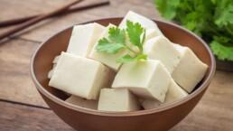 sanguinum_blog_know-how_thumb-tofu 1