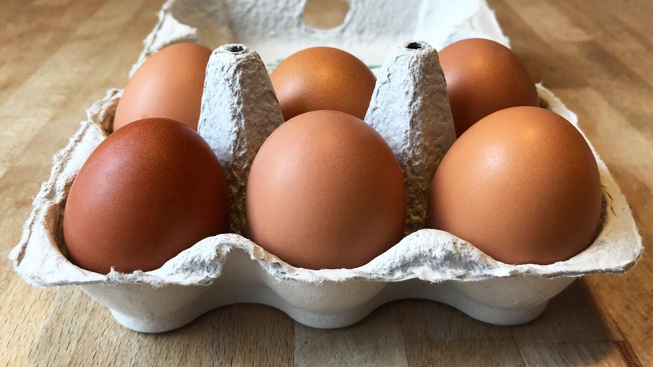 Sind Eier wirklich ungesund?