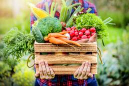 Immunsystem stärken durch Obst und Gemüse